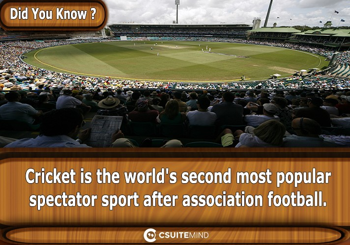 cricket-is-the-worlds-second-most-popular-spectator-sport-after-association-football
