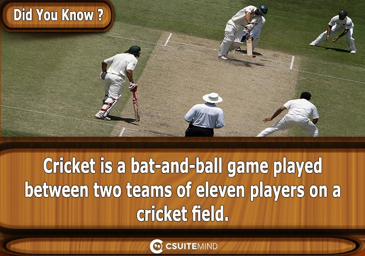 cricket-is-a-bat-and-ball-game-played-between-two-teams-of-eleven-players-on-a-cricket-field