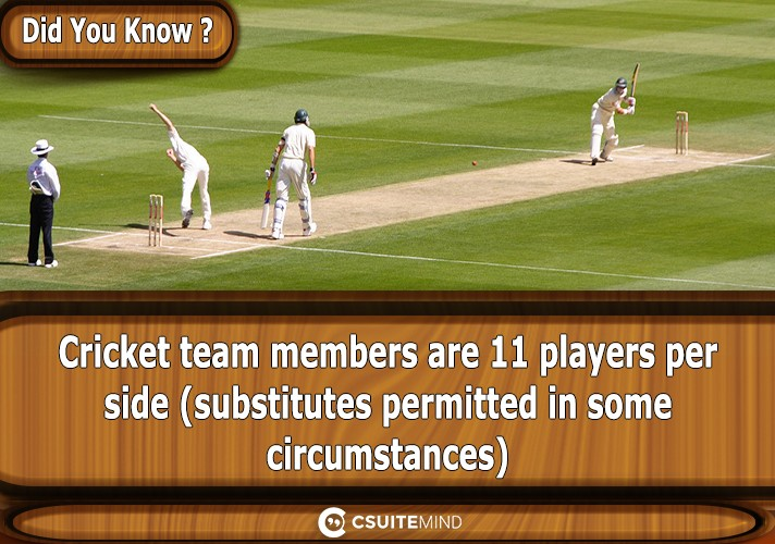 cricket-team-members-are-11-players-per-side-substitutes-permitted-in-some-circumstances