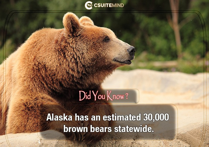 alaska-has-an-estimated-30000-brown-bears-statewide