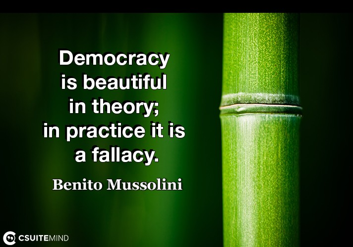 democracy-is-beautiful-in-theory-in-practice-it-is-a-fallac