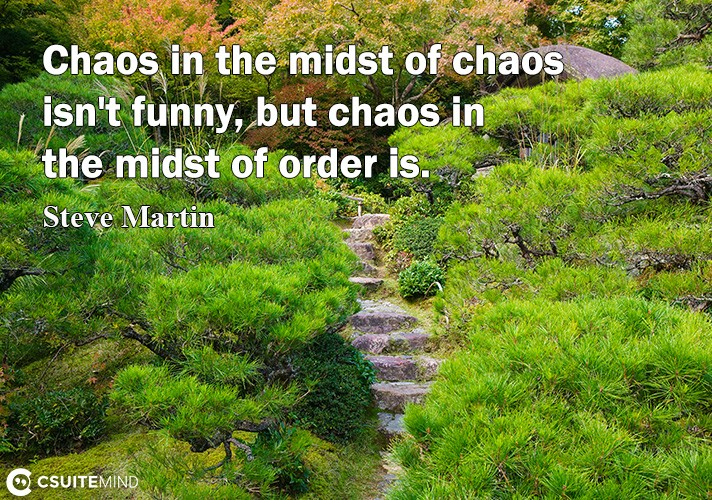 Chaos in the midst of chaos isn't funny, but chaos in the midst of order is.