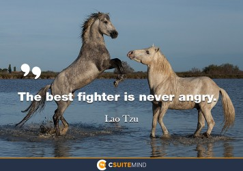 the-best-fighter-is-never-angry