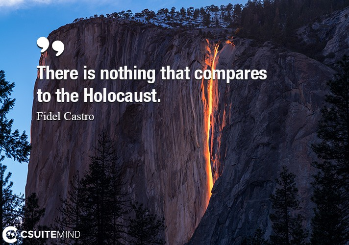 There is nothing that compares to the Holocaust.