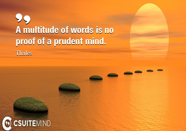 A multitude of words is no proof of a prudent mind.