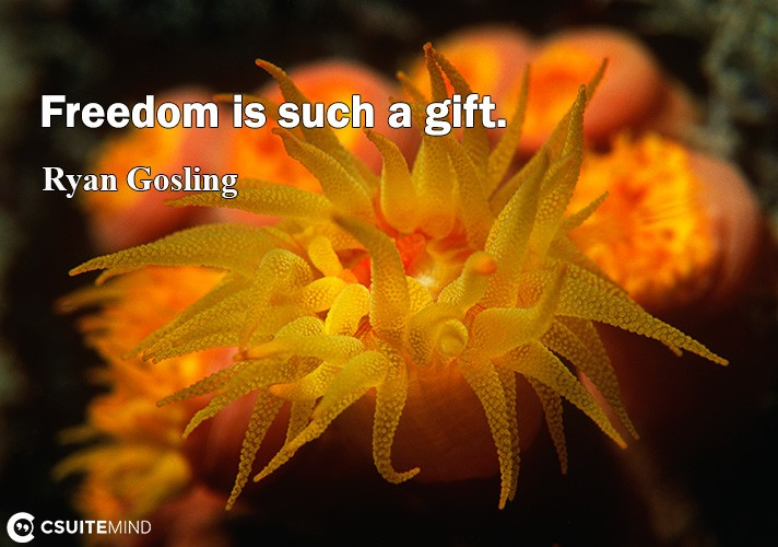 freedom-i-such-a-gift