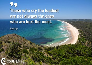 those-who-cry-the-loudest-are-not-always-the-ones-who-are-hu