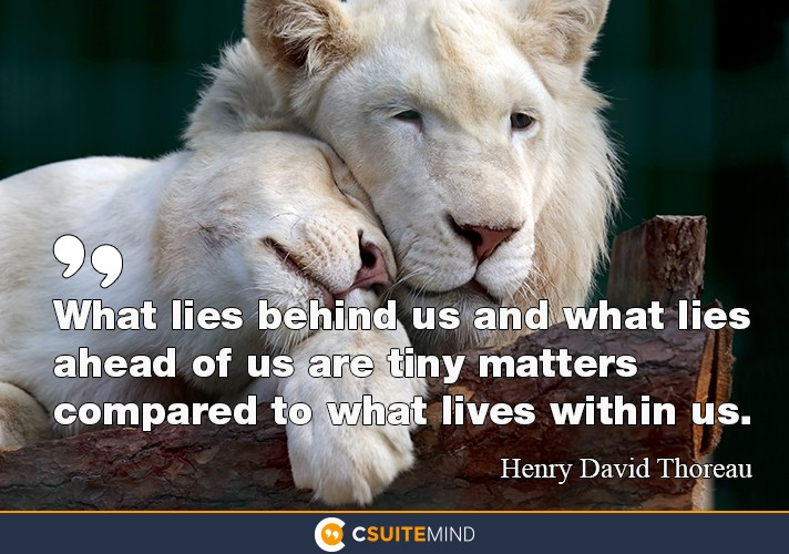 What lies behind us and what lies ahead of us are tiny matters compared to what lives within us.""