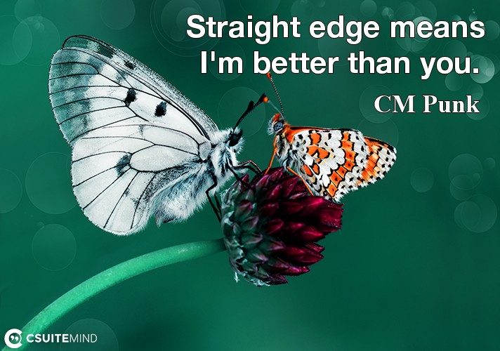 straight-edge-means-im-better-than-you