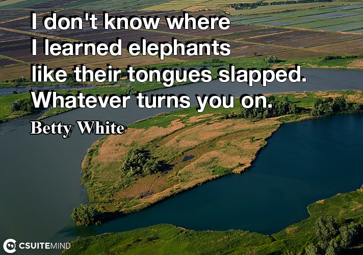 I don't know where I learned elephants like their tongues slapped. Whatever turns you on.