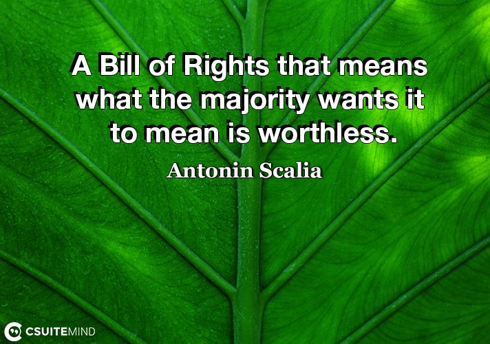 a-bill-of-rights-that-means-what-the-majority-wants-it-to-me