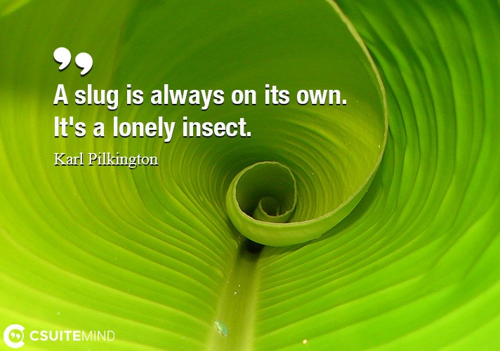A slug is always on its own. It's a lonely insect.