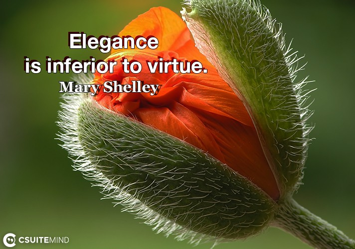 Elegance is inferior to virtue.