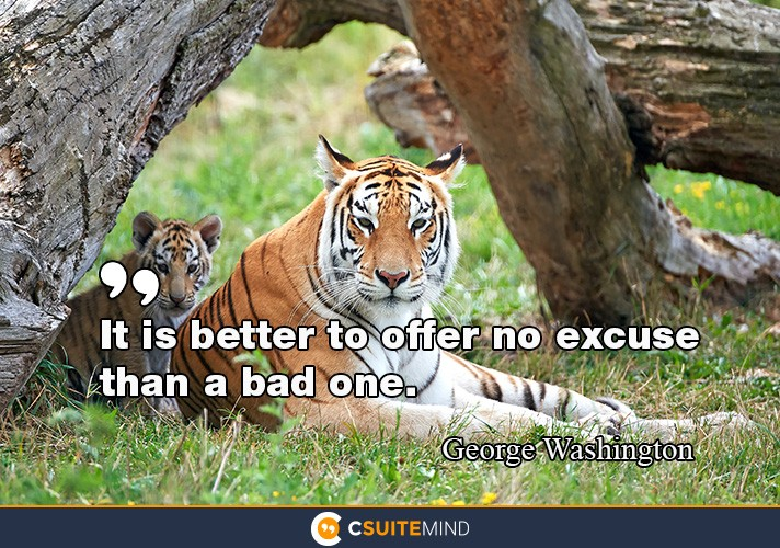 it-is-better-to-offer-no-excuse-than-a-bad-one
