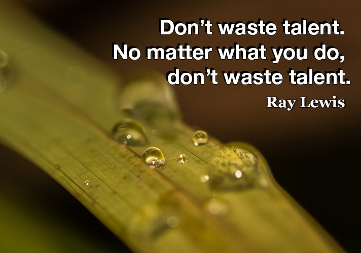 Don't waste talent. No matter what you do, don't waste talent.