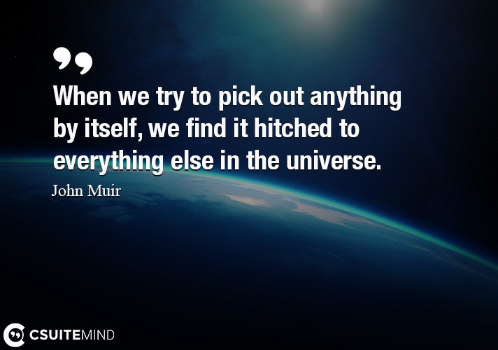 When we try to pick out anything by itself, we find it hitched to everything else in the universe.