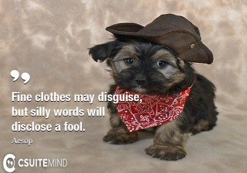 fine-clothes-may-disguise-but-silly-words-will-disclose-a-f
