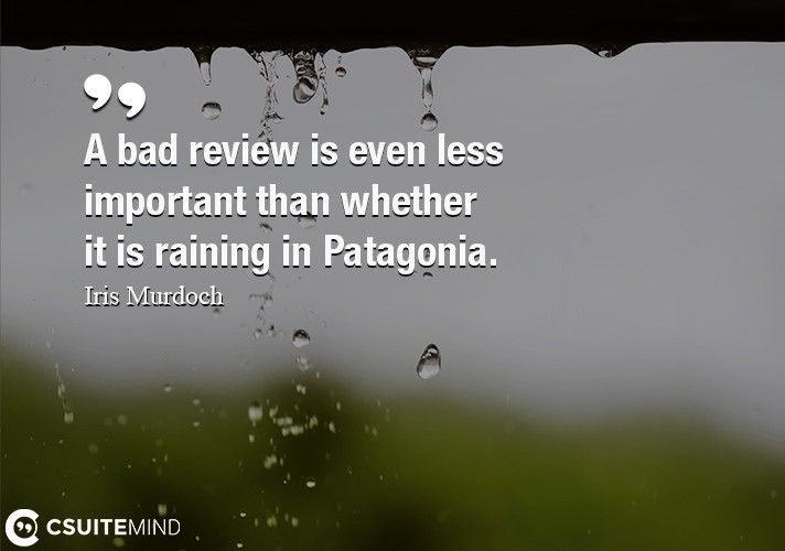 a-bad-review-is-even-less-important-than-whether-it-is-raini