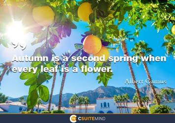 autumn-is-a-second-spring-when-every-leaf-is-a-flower