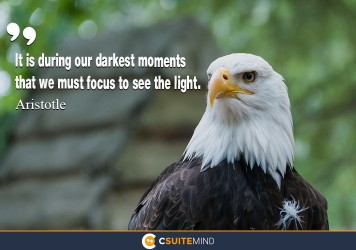 it-is-during-our-darkest-moments-that-we-must-focus-to-see-t