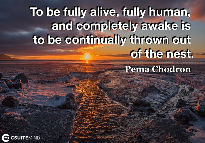 To be fully alive, fully human, and completely awake is to be continually thrown out of the nest.
