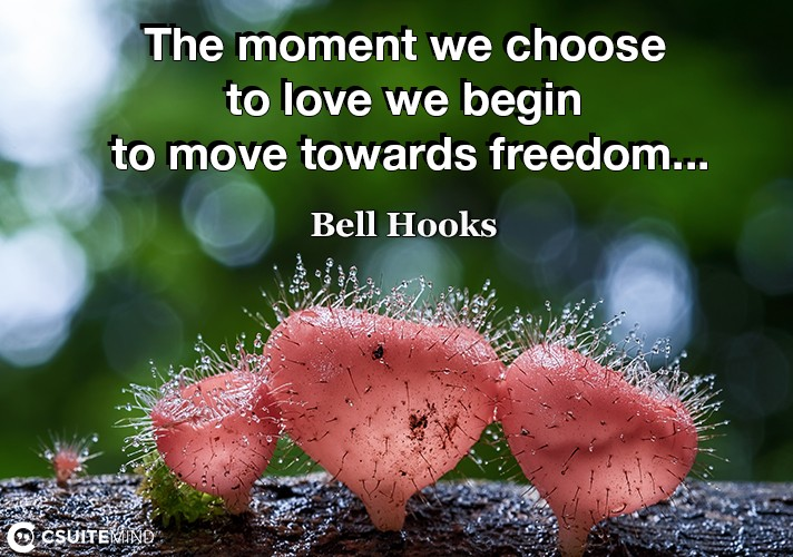 the-moment-we-choose-to-love-we-begin-to-move-towards-freedo