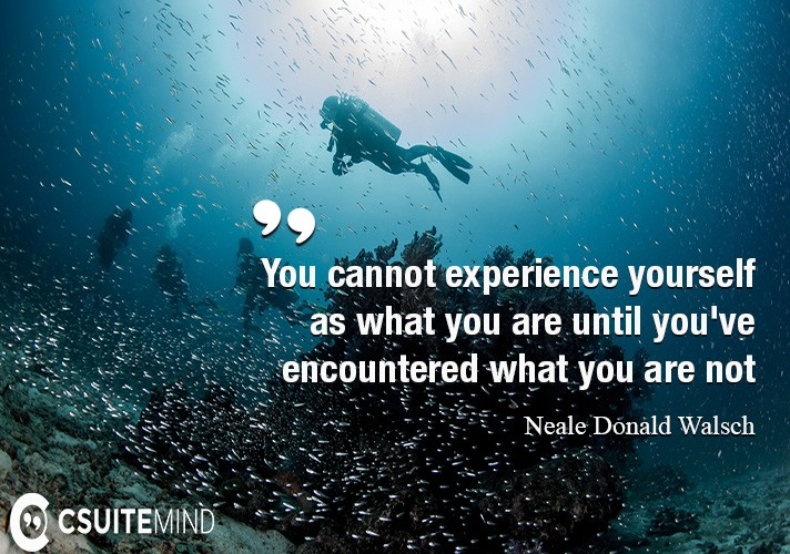 You cannot experience yourself as what you are until you've encountered what you are not