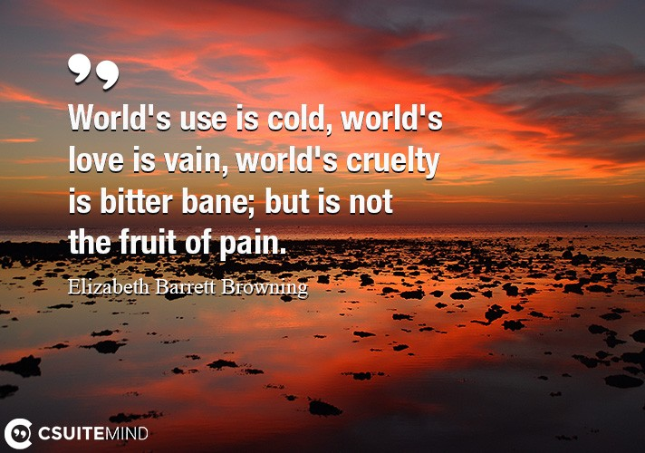 worlds-use-is-cold-worlds-love-is-vain-worlds-cruelty-i