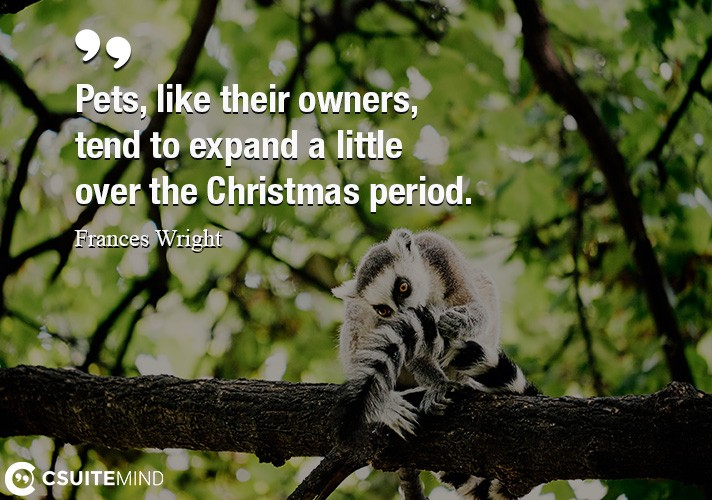 Pets, like their owners, tend to expand a little over the Christmas period.