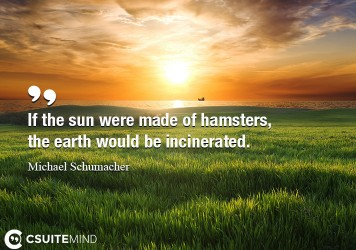 If the sun were made of hamsters, the earth would be incinerated.