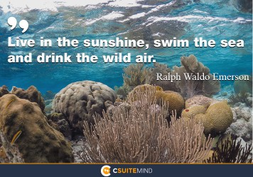 Live in the sunshine, swim the sea, and drink the wild air.