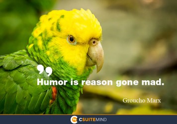 Humor is reason gone mad.