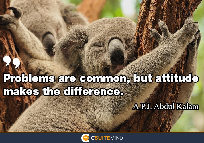 problems-are-common-but-attitude-makes-the-difference