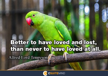 Better to have loved and lost, than never to have loved at all.