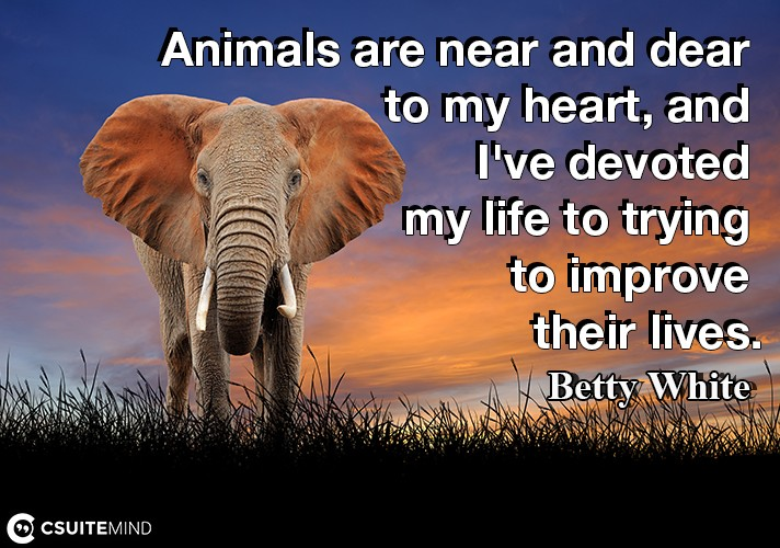 Animals are near and dear to my heart, and I've devoted my life to trying to improve their lives.