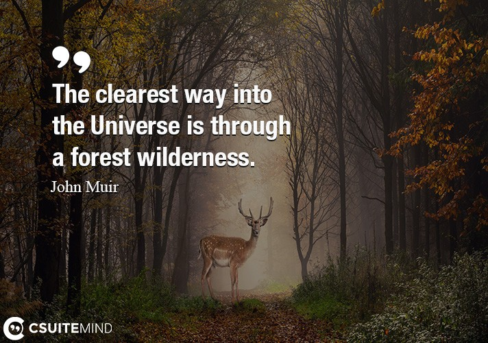 The clearest way into the Universe is through a forest wilderness.