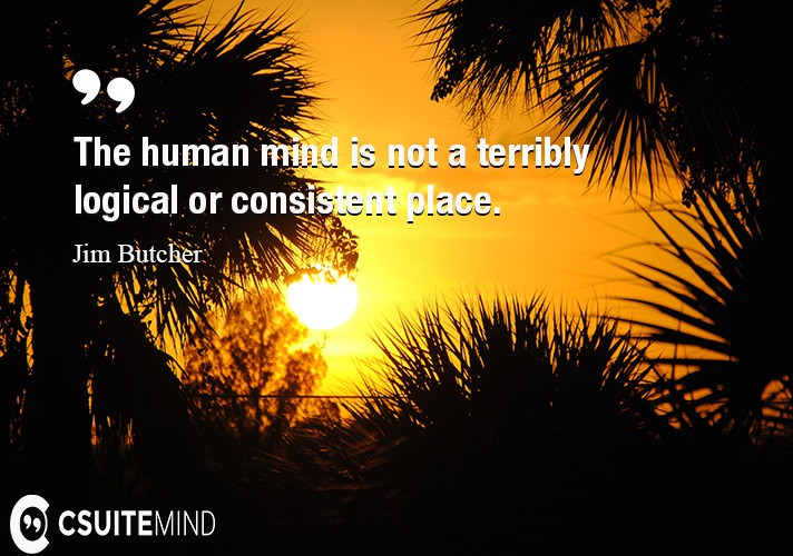 the-human-mind-is-not-a-terribly-logical-or-consistent-place
