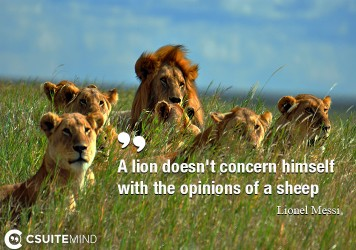 A lion doesn't concern himself with the opinions of a sheep