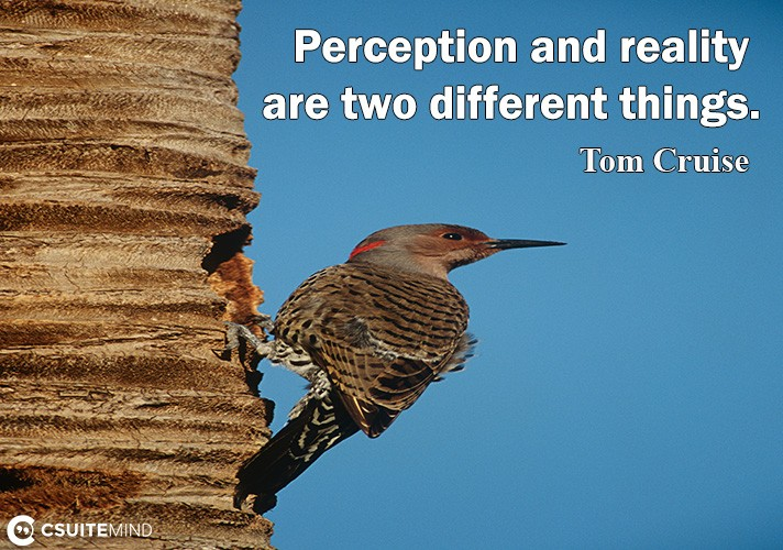persertion-and-realitu-are-two-different-thing
