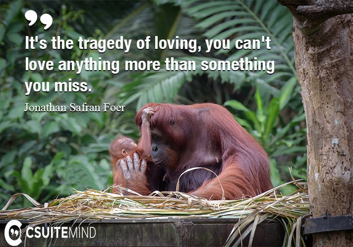 It's the tragedy of loving, you can't love anything more than something you miss.