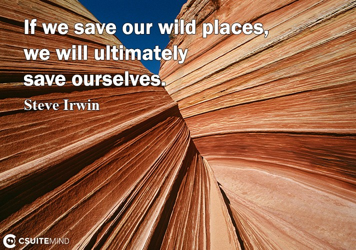 if-we-save-our-wild-places-we-will-ultimately-save-ourselve