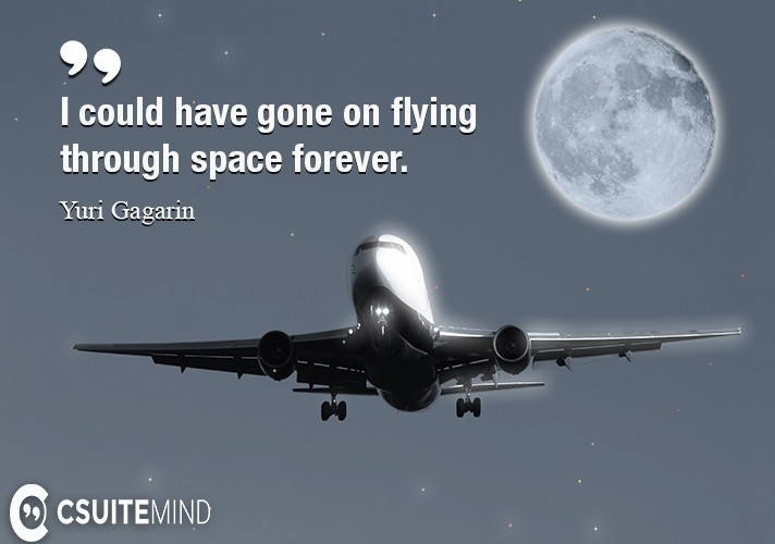 I could have gone on flying through space forever.
