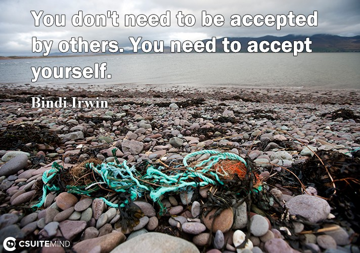 you-dont-need-to-be-accepted-by-other-you-need-to-assert