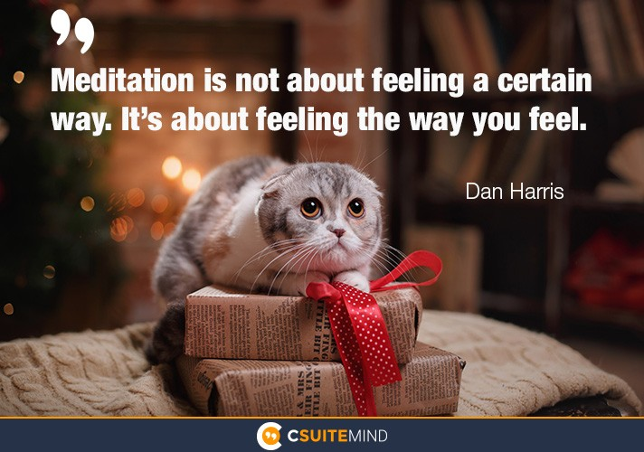 meditation-is-not-about-feeling-a-certain-way-its-about-fe