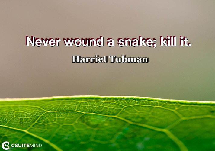 never-wound-a-snake-kill-it