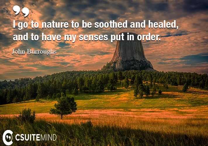 I go to nature to be soothed and healed, and to have my senses put in order.