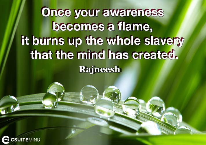 once-your-awareness-becomes-a-flame-it-burns-up-the-whole-s