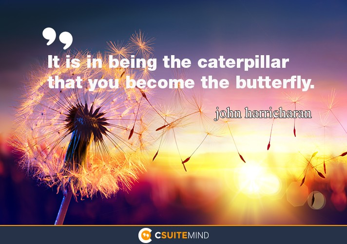 it-is-in-being-the-caterpillar-that-you-become-the-butterfly