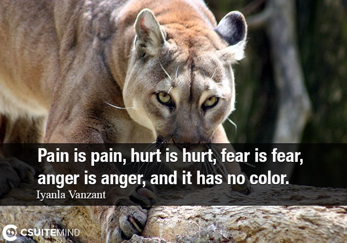 pain-is-pain-hurt-is-hurt-fear-is-fear-anger-is-anger-an